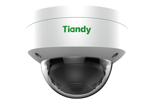 Camera-IP-Tiandy TC-NC552S, Camera-IP-Tiandy, Tiandy TC-NC552S, TC-NC552S, NC552S
